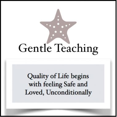 about gentle teaching