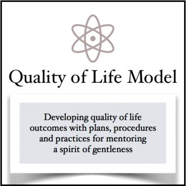 about quality of life model