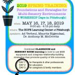 Annual MSE Spring Training Workshop Days 2019